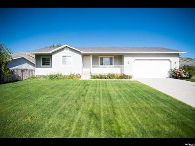 Hyrum Single Family Home For Sale: 167 S Wapiti Loop