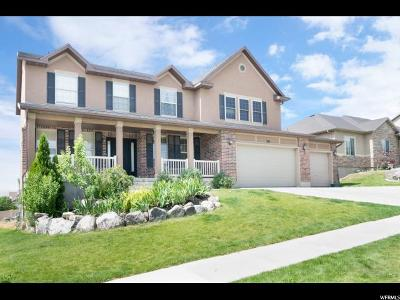 Saratoga Springs Single Family Home For Sale: 293 W Winter Wheat Way