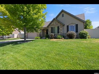Salem Single Family Home For Sale: 788 E 540 S