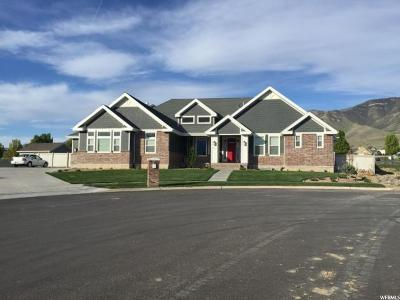 Saratoga Springs Single Family Home For Sale: 161 E Bayview Cir S