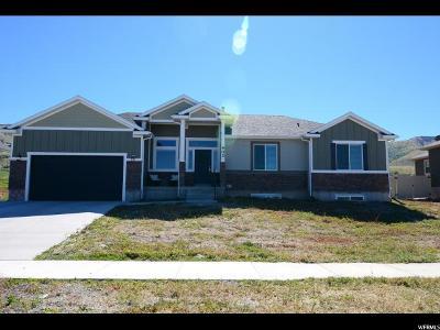 Smithfield Single Family Home For Sale: 402 S 1100 E