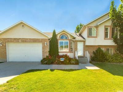 West Jordan Single Family Home For Sale: 9358 S 3110 W
