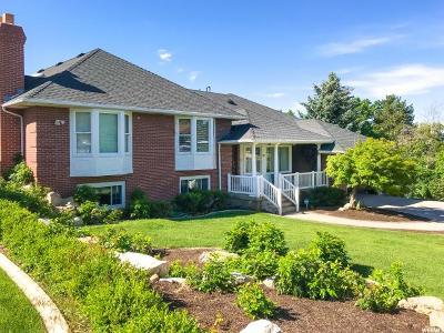 Sandy Single Family Home For Sale: 2862 E 9800 S