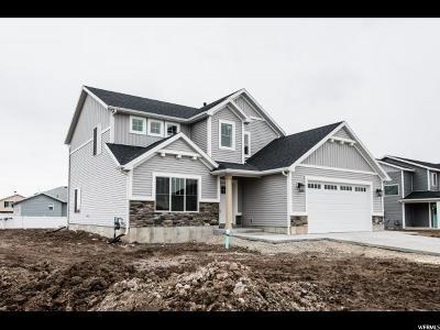 Smithfield Single Family Home For Sale: 476 N 680 E