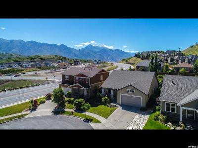 Draper Single Family Home For Sale: 2172 E Feather Gold Ct S