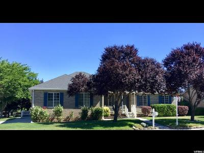 Payson Single Family Home For Sale: 617 E 800 S