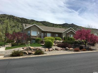 Providence Single Family Home For Sale: 16 S Sherwood Drive E