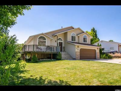 Cedar Hills Single Family Home For Sale: 10029 N Sage Rd