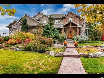 Sandy Single Family Home For Sale: 10928 S Prescott Dr E