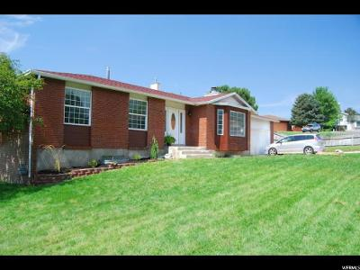 Sandy Single Family Home For Sale: 9858 S Riggs Cir
