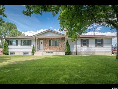 Wellsville Single Family Home For Sale: 825 E Main