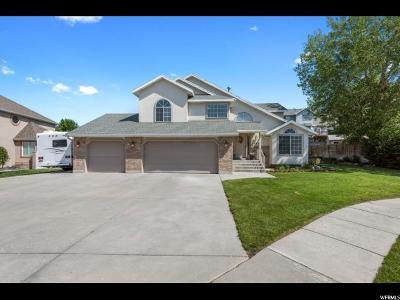 Sandy Single Family Home For Sale: 1471 E Snow Iris Cir S