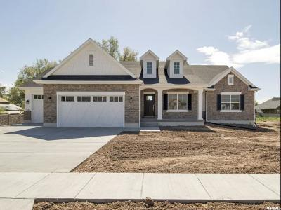 Kaysville Single Family Home For Sale: 1824 W Robins Way N