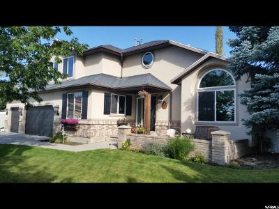 Sandy Single Family Home For Sale: 11518 Colchester Dr