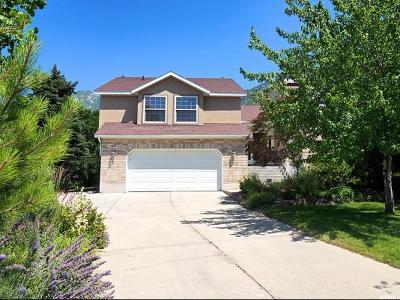 Sandy Single Family Home For Sale: 2165 E Gambel Oak Dr S