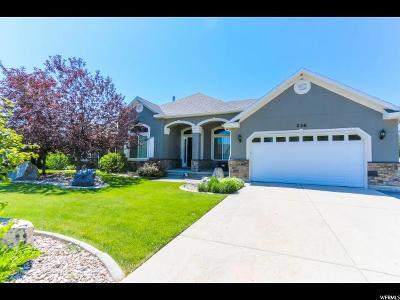Grantsville Single Family Home For Sale: 236 E Box Elder Dr
