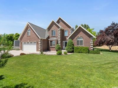Salem Single Family Home For Sale: 663 E 960 N