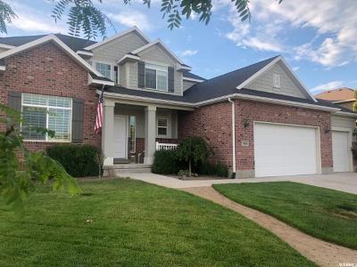 Lehi Single Family Home For Sale: 309 E Love Ln