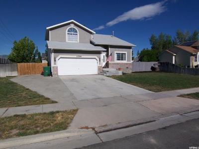 Riverton Single Family Home For Sale: 13794 S Homestead Ln