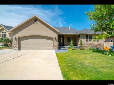 Cedar Hills Single Family Home For Sale: 10283 N Tamarack Way