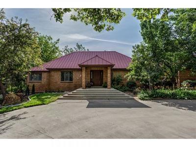 South Jordan Single Family Home For Sale: 11287 S Brook N Lance Ln W #201
