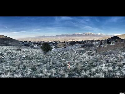 Herriman Residential Lots & Land For Sale: 5571 W Lookout Mesa Cir S