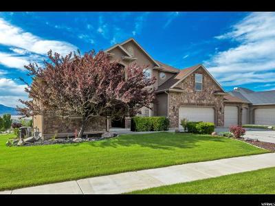 Herriman Single Family Home For Sale: 14734 S Cedar Knoll Cir