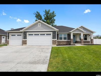 American Fork Single Family Home For Sale: 906 W 800 N