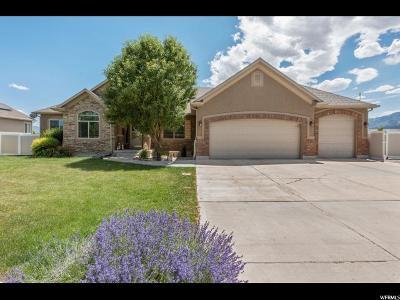 Grantsville Single Family Home For Sale: 86 E Sorrel Ln S