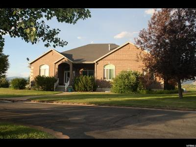 Wellsville Single Family Home For Sale: 4070 S 4000 W
