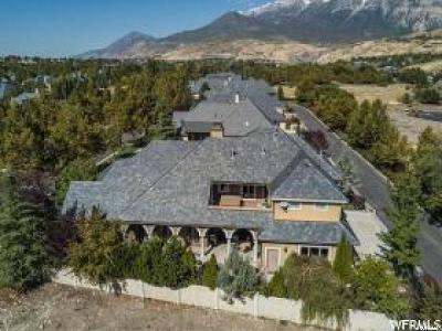 Provo Single Family Home For Sale: 4234 N Stonecrossing