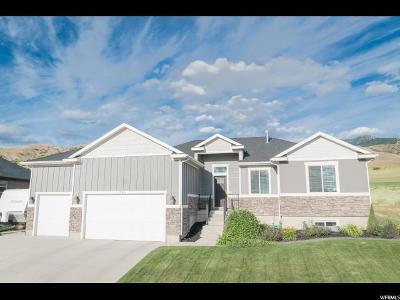 Smithfield Single Family Home For Sale: 390 S 1100 E