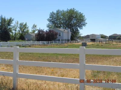 Weber County Single Family Home For Sale: 5915 S 4300 W