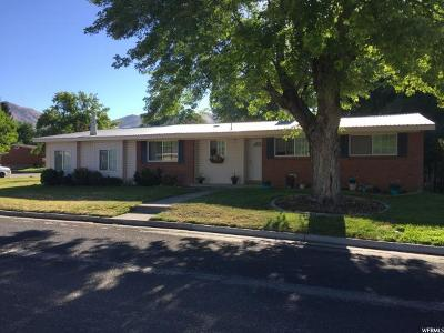 Brigham City Single Family Home For Sale: 1009 S Englewood