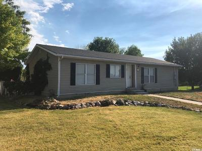Perry Single Family Home For Sale: 1167 W 2450 S