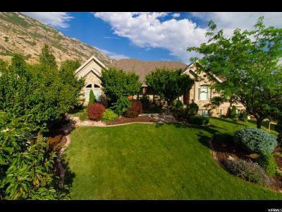 Cedar Hills Single Family Home For Sale: 3577 W Cascade Springs Cv