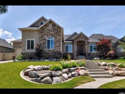 South Jordan Single Family Home For Sale: 10002 S Caddie Cir