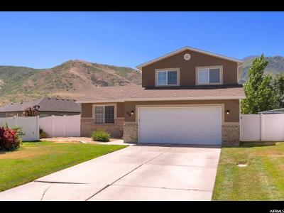 Payson Single Family Home For Sale: 575 W Saddlebrook Dr