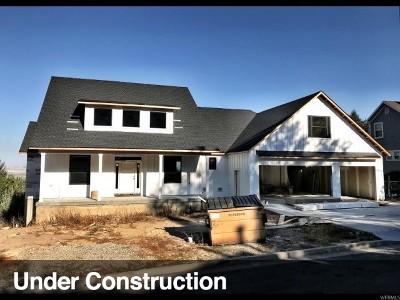 Logan Single Family Home For Sale: 1197 Cedar Heights Dr