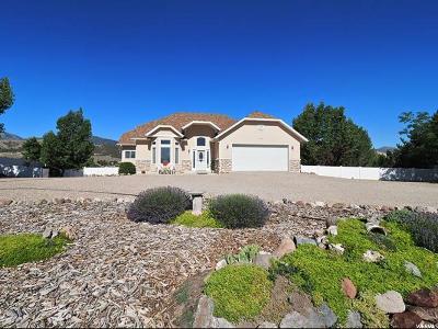 Herriman Single Family Home For Sale: 14012 S Sky Haven Cir
