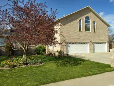 Midvale Single Family Home For Sale: 539 E Splendor View Cir