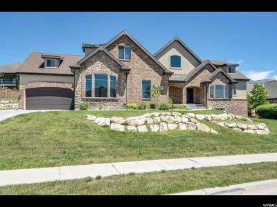 Highland Single Family Home For Sale: 12378 N Wildflower Ln W