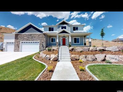 Eagle Mountain Single Family Home For Sale: 2703 E Sunset Dr