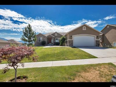 Saratoga Springs Single Family Home For Sale: 3362 S Red Tailed Crescent Dr Dr