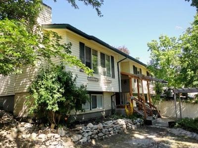 Brigham City Single Family Home For Sale: 838 Highland Blvd