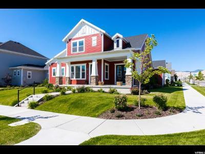 South Jordan Single Family Home For Sale: 10372 S Liffey Ln W
