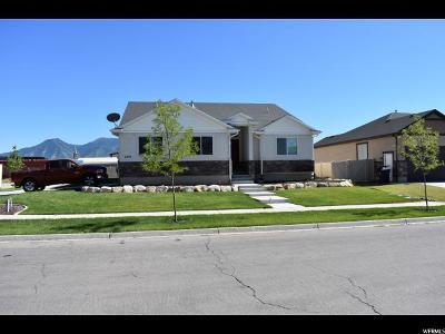 Springville Single Family Home For Sale: 609 W 1450 S