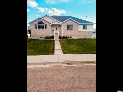 Castle Dale UT Single Family Home For Sale: $256,900