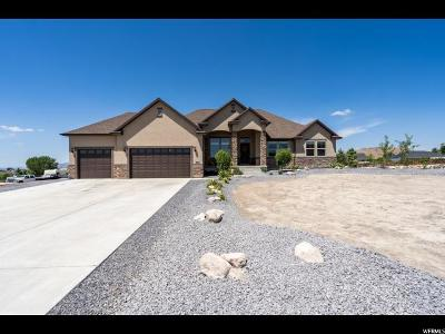 Eagle Mountain Single Family Home For Sale: 9657 N Faust Sta