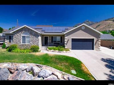 Cedar Hills Single Family Home For Sale: 3930 W 10260 N